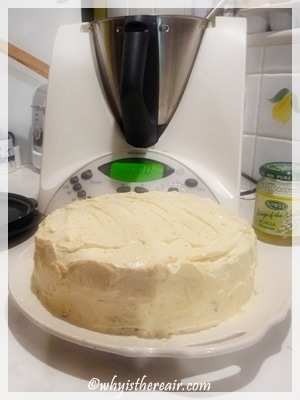 Thermomix carrot cake iced American style