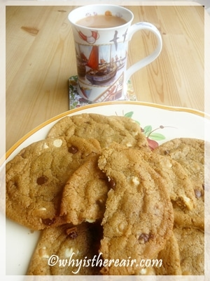 Perfect soft and chewy scrumptious chocolate chip cookies made in a minute in your Thermomix!