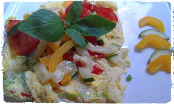This is one of an infinite variety of Fat-Free Steamed Omelettes you can create in your Thermomix