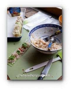 Make sure you cut your leek sheets into 1-inch / 2.5 cm strips to make bite-sized, easy to eat pieces!