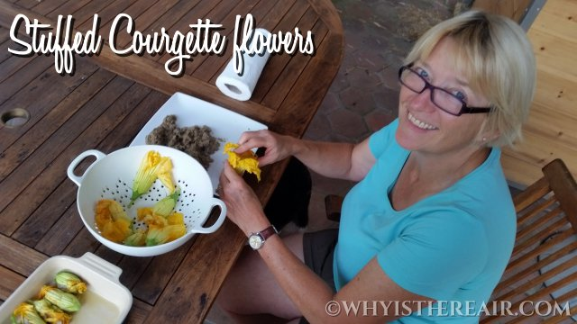 Here's Madame Thermomix stuffing my home-grown courgette flowers!