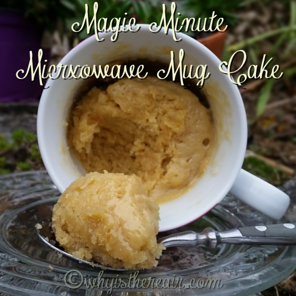 This Magic Minute Microwave Mug Cake is so fast and easy to make, it will be your guilty pleasure!