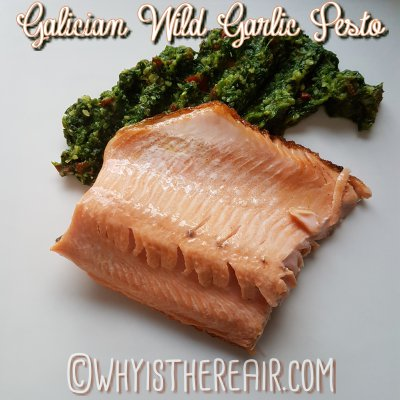 My Galician Wild Garlic Pesto delightfully enhanced this gorgeous filet of trout for a delicious dinner